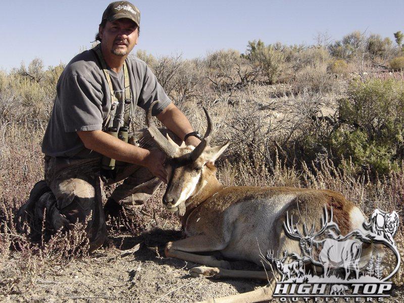 antelope-2